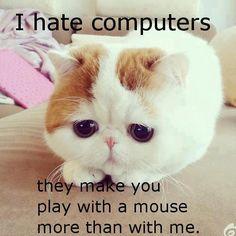 I hate computers...