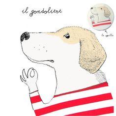 dog portrait, sailor dog