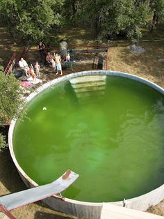 stock tank pool... And yes this was often the color of the water in our stock tank pool!!