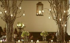 Tree Branch Wedding Reception Centerpieces