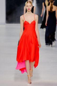Christian Dior, Resort 2014  wow