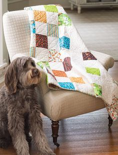 """Tony used a collection of prints featuring his furry best friends from the Puppy Love collection by Quilting Treasures. Puppy Patches is an easy quilt that makes use of 5"""" charm squares. This quilt is doggone easy! Video tutorial on how to make this quilt is available! Find this quilt in Quilting Quickly Fall '14. quilt projects, quilt treasur, puppi, easi quilt"""