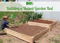 DIY Raised Garden Bed - Tips For an Incredible Raised Garden Bed! #garden #summer #farmtotable