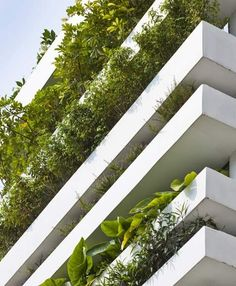 A dozen layers of concrete planters create a vertical garden on the facade of this house in Ho Chi Minh City.
