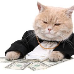 6 Easily Adoptable Traits of People Who are Nuttily Successful with Money