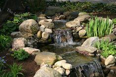 plants around a garden waterfall landscape