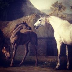 Brood Mares & Foals. George Stubbs 1767. Getty Museum.