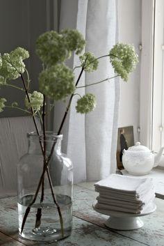 decor, coffee tables, elisabeth rum, apothecary jars, bouquets