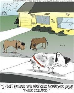 :) Kids, wear collars properly!!  #dog