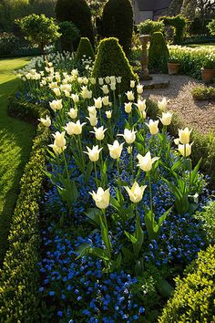 Beautifully designed plant and flower garden