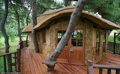 What a tree house! favorit place, tree houses, luxuri treehous, awesom treehous, trees, dream tree, space, amaz tree, live