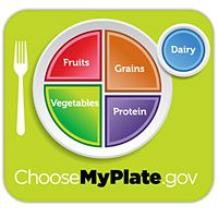 my plate - 6 new healthy-eating rules (without the food pyramid)