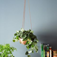 Large Hanging Planter/Basket with hand spun copper/ brass bowl & antique chain