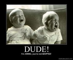 Dude! I'm JOKING. You're not ADOPTED.