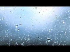 What is precipitation?  (C1, Wk 22)