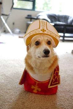 Pope Corgi XIV