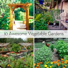 Eye Candy: 10 Vegetable Gardens You'll Love to Garden - I especially like the one with the screens that open up.