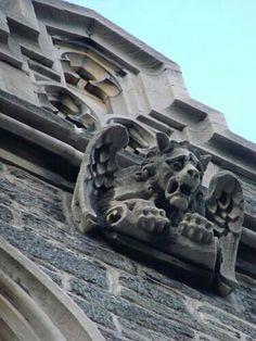{Gargoyle} #statue #protector #gargoyle #stone #sculpture #gothic