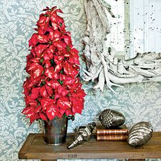 Cut Poinsettia Tree Arrangement