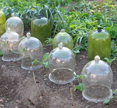 antique cloches ~ love the green ones!