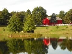 Clarion County Photo of the Day, Feb. 29, 2012. Freeman Tree Farm by Kim Raybuck. Looks like Spring is coming to Clarion County.
