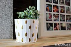Gold Succulent Pot