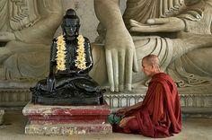 monk medit, buddhist monk