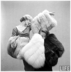 Fashions – Long Haired Furs Life Magazine, Gordon Parks, 1952