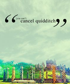 "Going through pins, and ""cancel quiddtch"" catches my eye..."