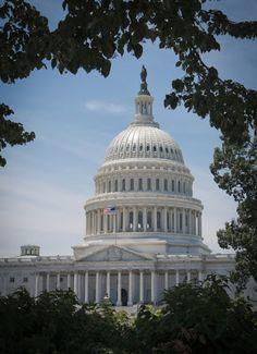 The Capitol  -  Washington, D.C.