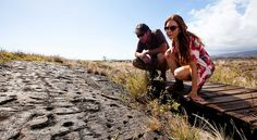 Exploring the Parks & Trails of Hawaii, the Big Island - Puu Loa Petroglyphs #travel #gohawaii #trekking