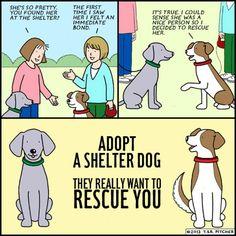 Adopt, don't shop!!!