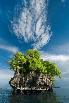 Headhunter Island, Choiseul Province, Solomon Islands
