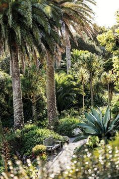 Palm Trees and Sandy Beaches…in England? : Condé Nast Traveler