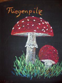 Waldorf ~ 5th grade ~ Botany ~ Mushroom ~ chalkboard drawing