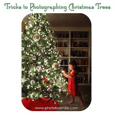 How to get a great Christmas tree photo!