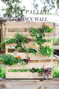DIY Pallet Vertical Garden, photo by Izzy Hudgins Photography http://ruffledblog.com/diy-palette-vertical-garden #diyproject #seatingchart