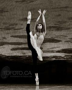 graduacion la, oksana bondareva, beauti movement, swan lake, dànce àway, la superior