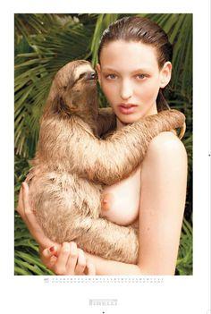 sloths, pirelli takvimi, pets, pirelli calendar, pictur pirelli, magazines, erot art, calendar 2010, terry richardson