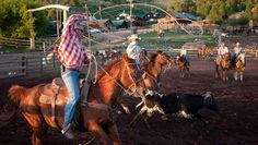 In the heart of the Colorado Rockies, Black Mountain Ranch is located between the beautiful mountain towns of Vail and Steamboat Springs. We like this ranch because they offer unlimited horseback riding, an overnight pack trip, a longhorn cattle drive and other fun Western activities.