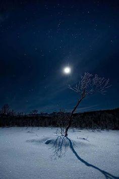 moon-light-7