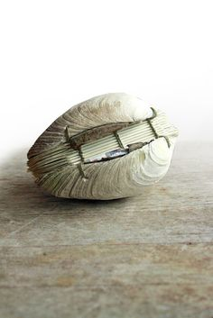 Book of the Sea Handstitched Clamshell Book Sculpture by odelae (Erica Ekrem). An ode to the Salish Sea.... a functional and sculptural hand bound book.  From a butter clam shell (Saxidomus giganteus) discovered on the beach off the coast of Orcas Island, WA