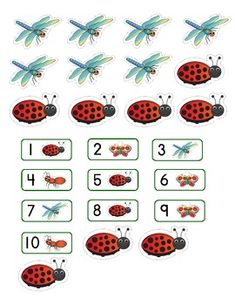 Counting Bugs! Number Concepts 1-10