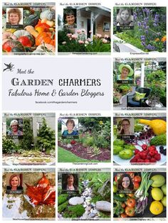 Meet The Garden Charmers ~ a fabulous flock of home & garden bloggers! https://www.facebook.com/thegardencharmers?ref=hl