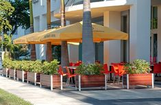 Sidewalk Cafe Garden Planter Box