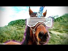 freddiew : Pimp My Horse