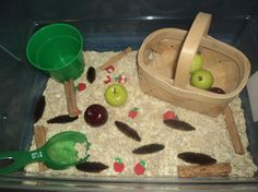 Apple Harvest Sensory Tub