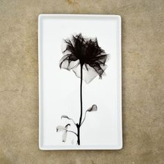 Vintage Rose X-Ray Tray Large now featured on Fab.