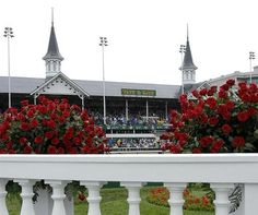 All things Kentucky Derby!  Hats, horses, mint juleps, roses, My Old Kentucky Home ......