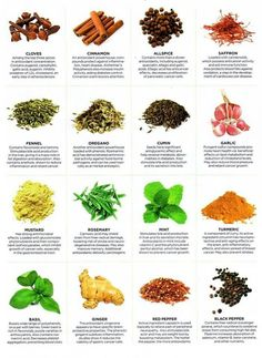 healing herbs chart ~  Just make sure to even out your doses of ginger with rosemary, since it's said that ginger makes you forgetful ;P